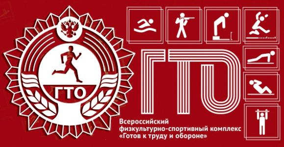 Центр тестирования ДОСААФ России по нормативам ГТО